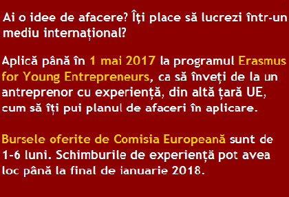 https://fundatiadanis.ro/ultimele-10-burse-pentru-antreprenori/